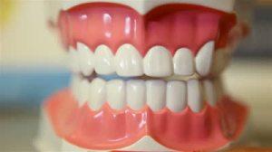 stock-footage-brushing-fake-teeth